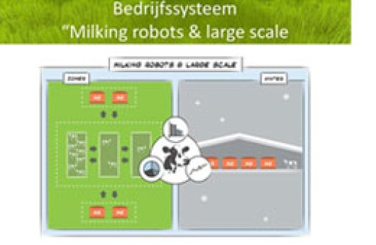 Milking robots & large scale